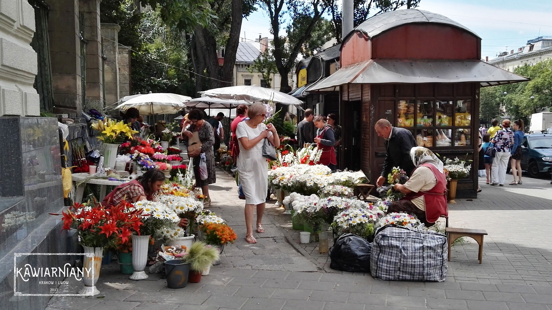 Lwów - zakupy we Lwowie