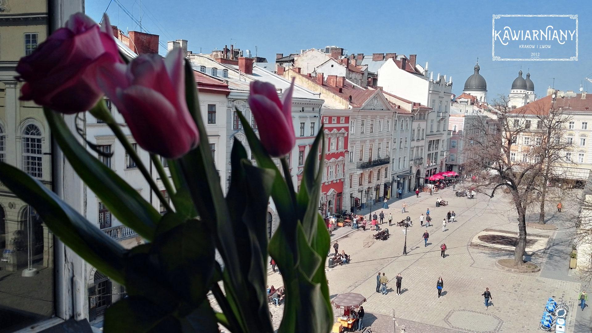 Najbardziej luksusowe i najciekawsze hotele we Lwowie TOP 10. Ceny i opinie