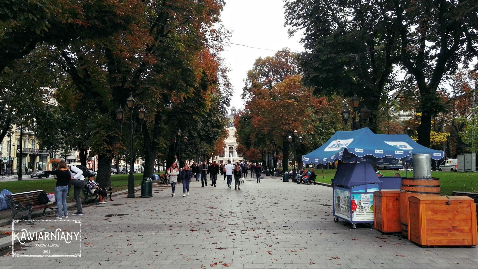 Czy warto jechać do Lwowa? Porady przed wyjazdem do Lwowa