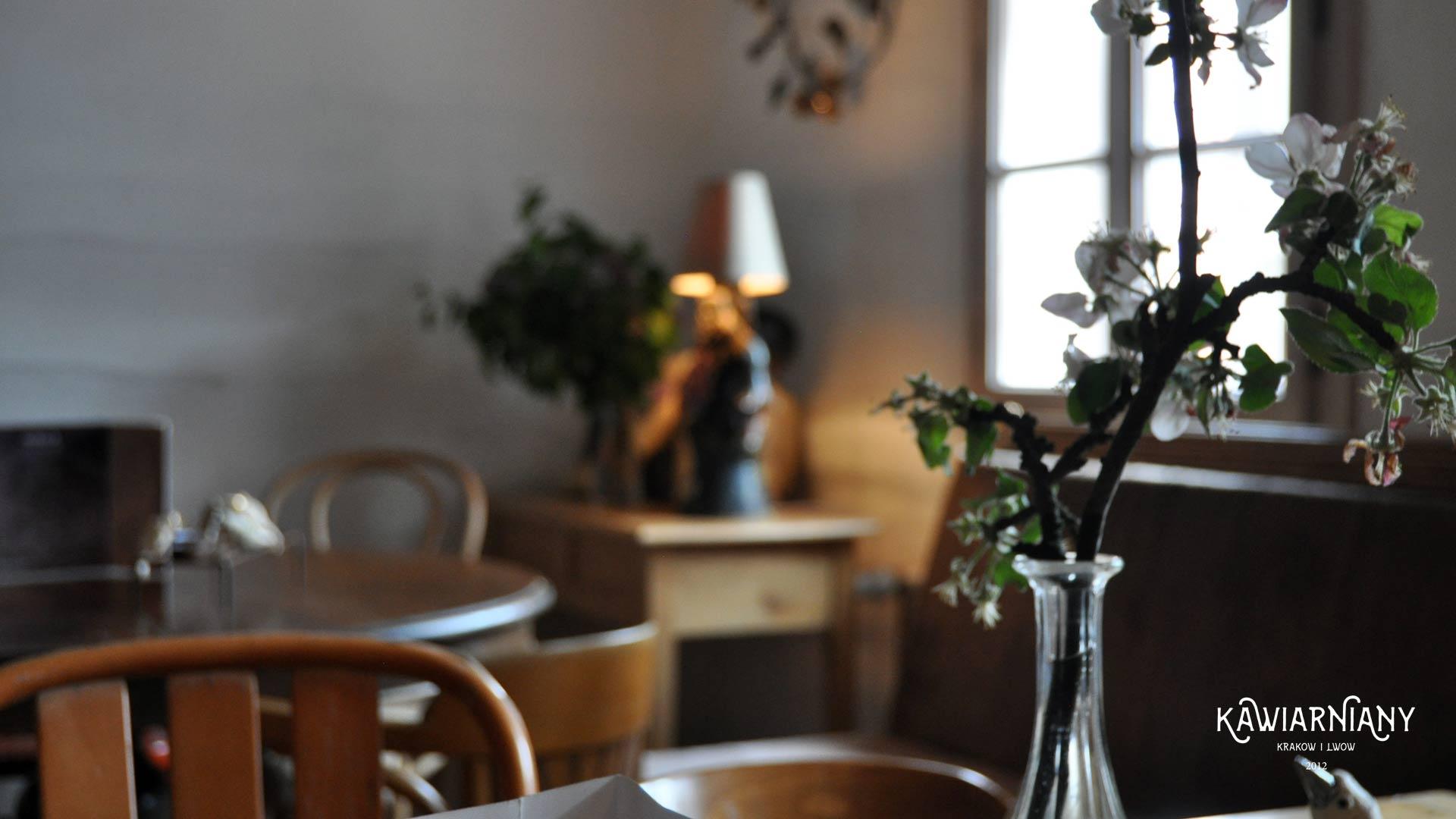 Arka Cafe, Lanckorona