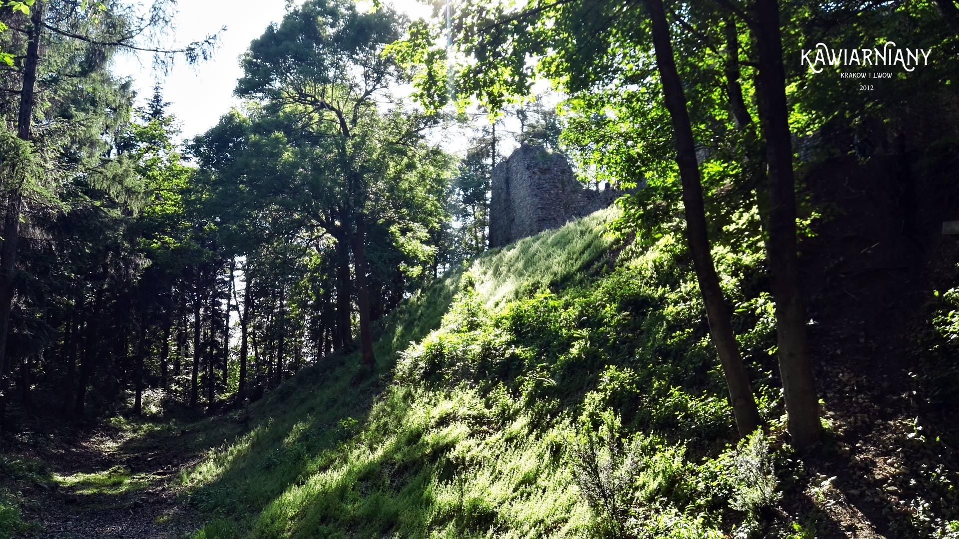 Lanckorona, ruiny zamku
