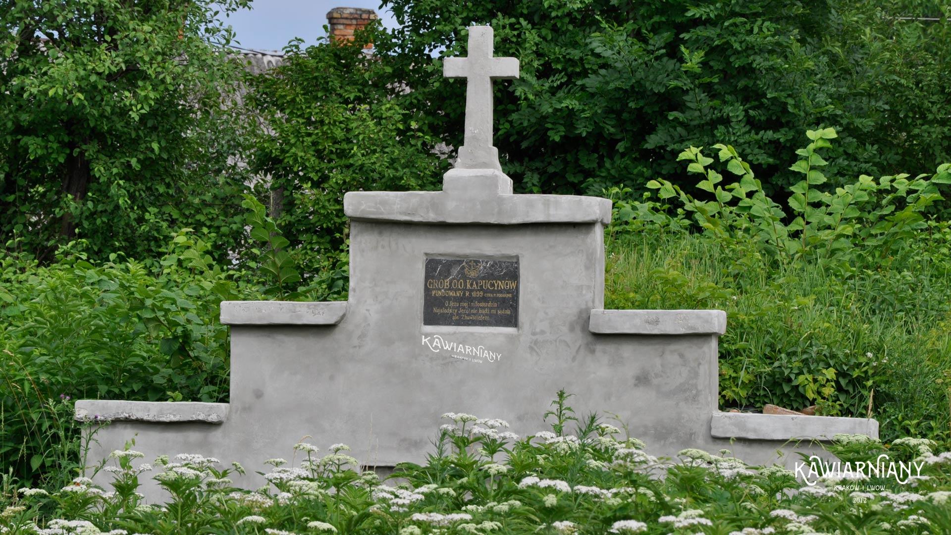 Olesko, cmentarz