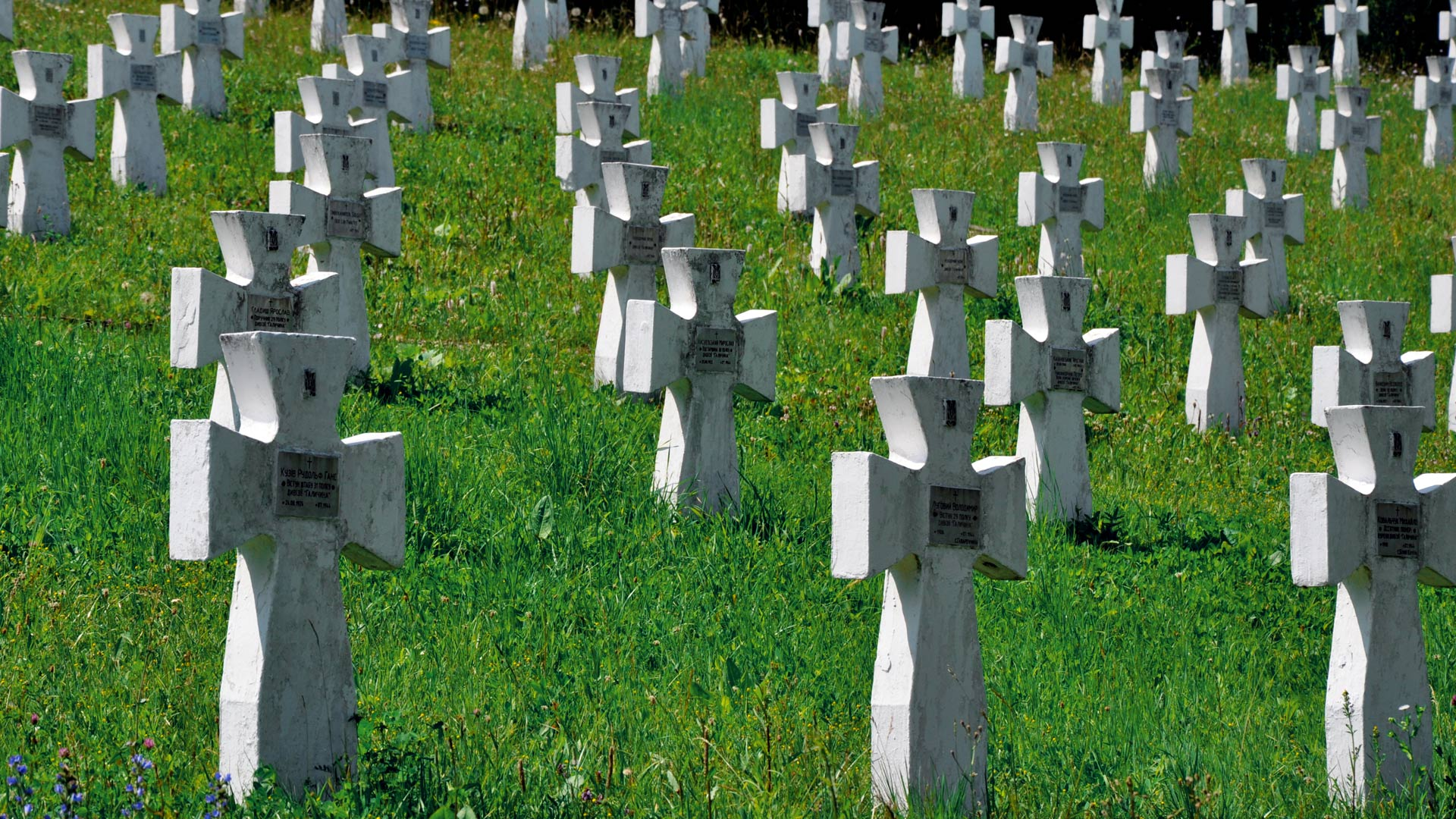 Cmentarz SS we wsi Czerwone