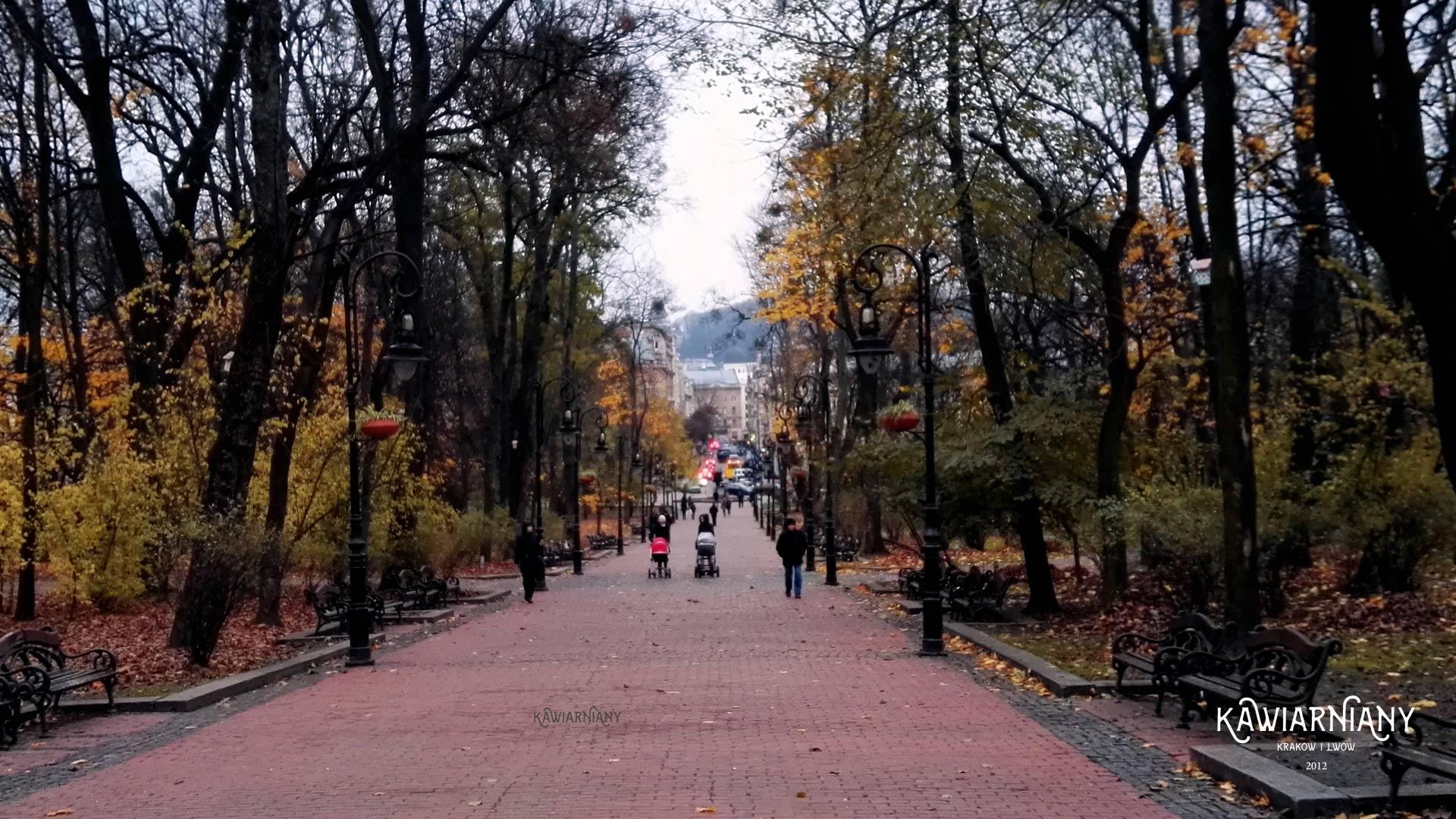 Pod Lwowem 300(!) nowych zachorowań na odrę w DWA dni