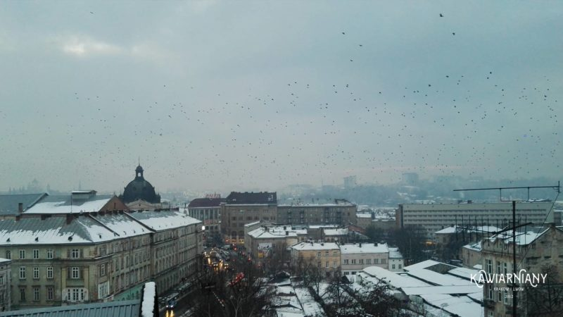 Odra na Ukrainie