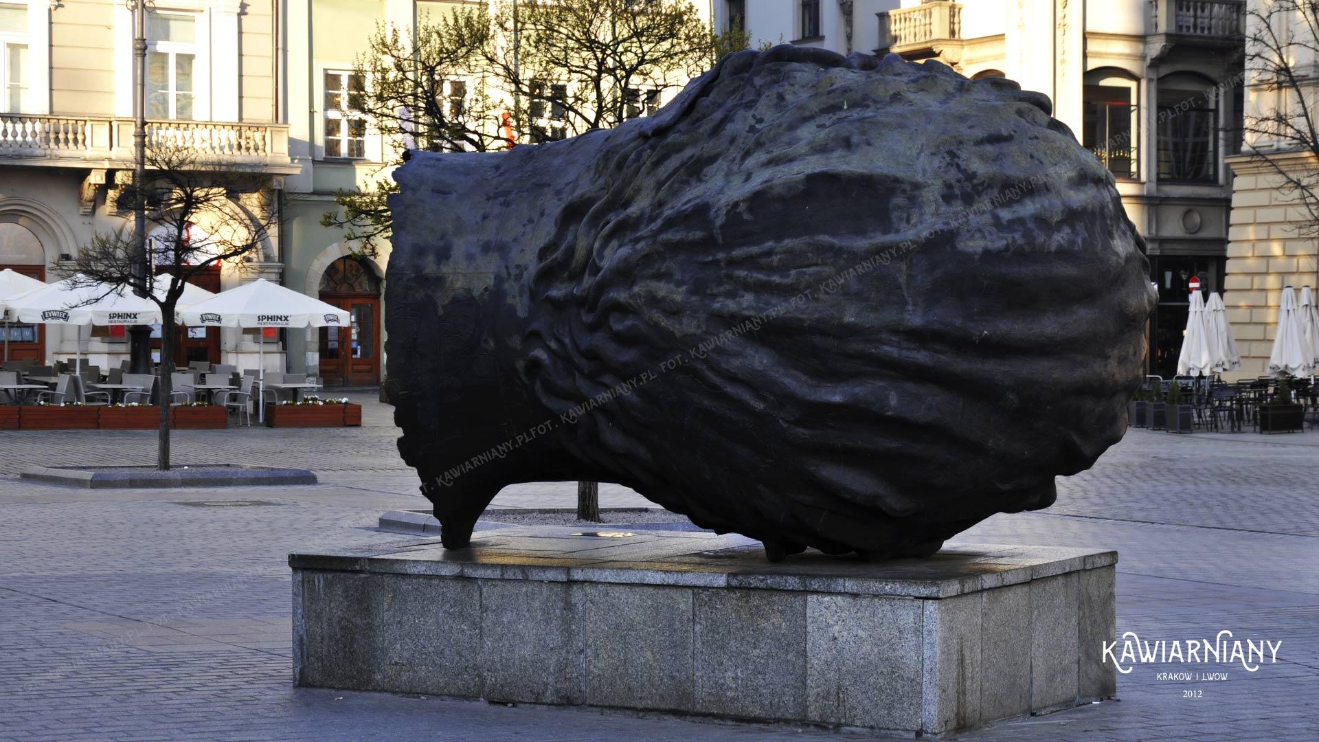 Głowa na Rynku w Krakowie