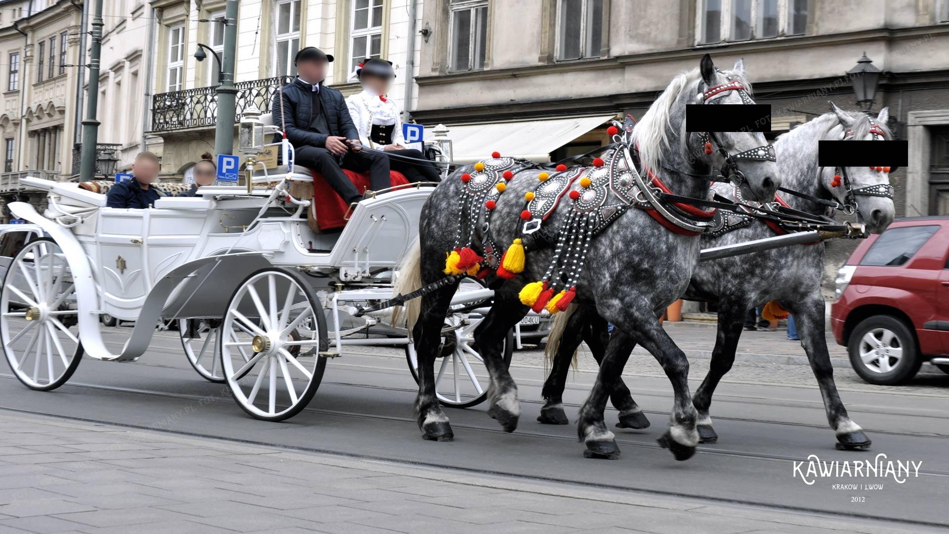 Dorożki w Krakowie