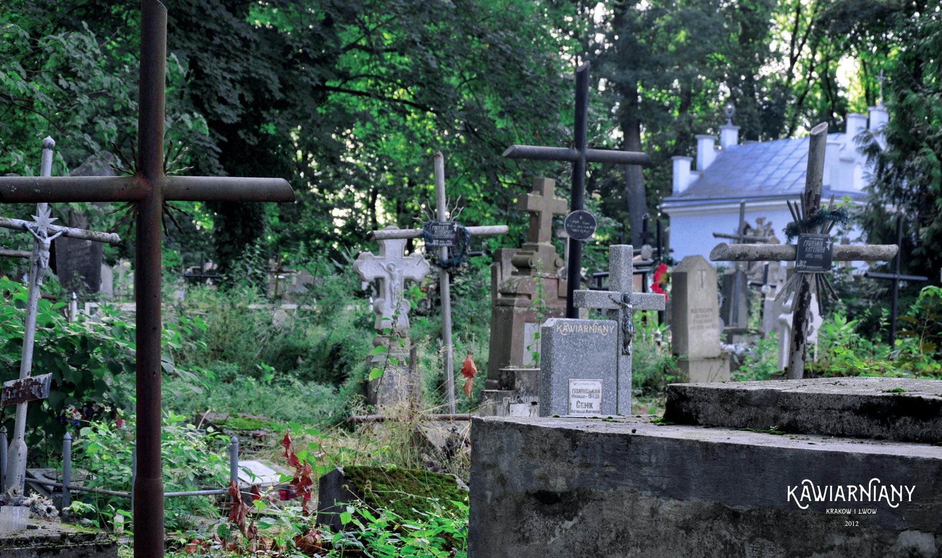 Cmentarz katolicki w Drohobyczu