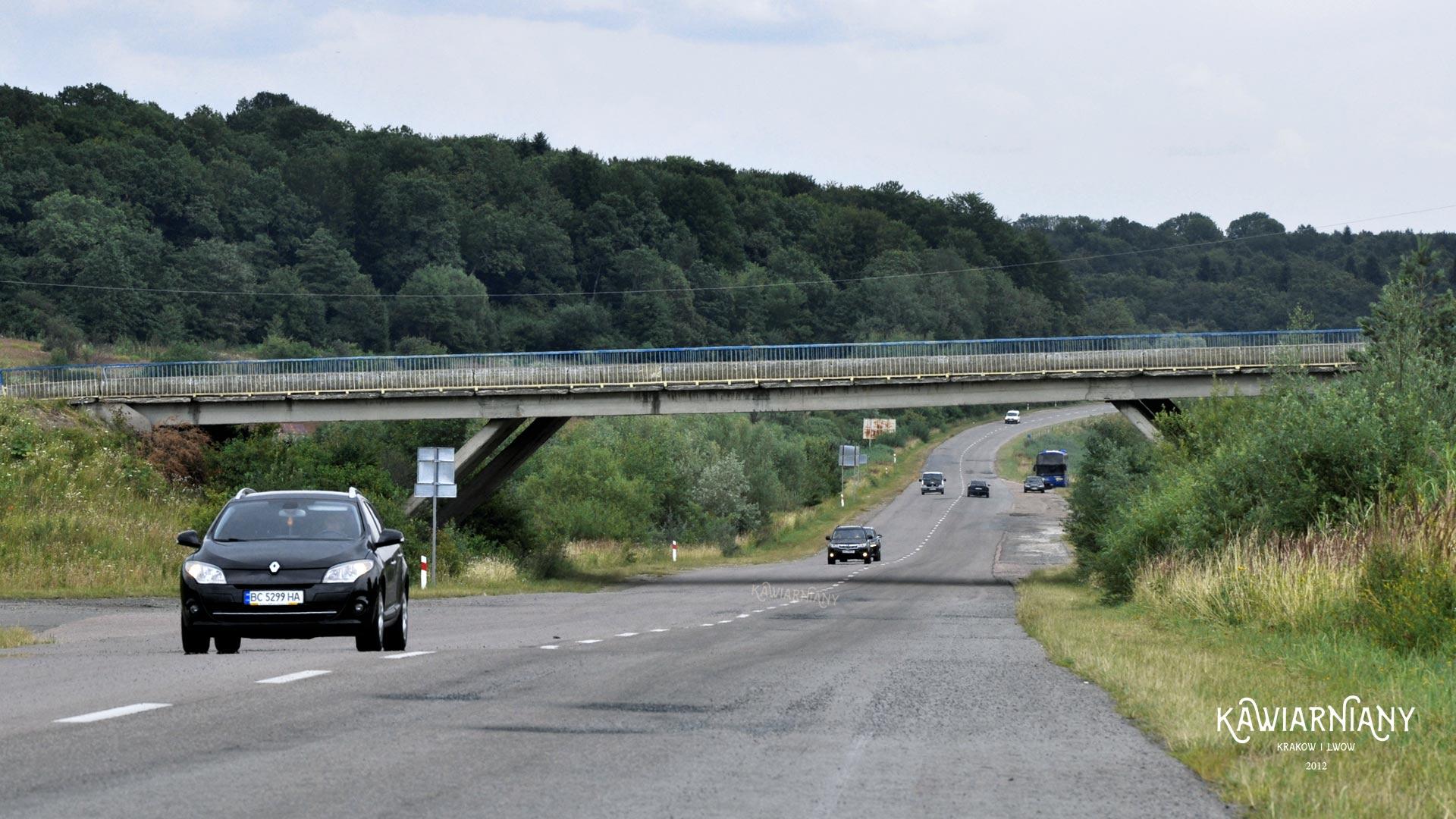 Droga T1402 na linii Stryj-Truskawiec