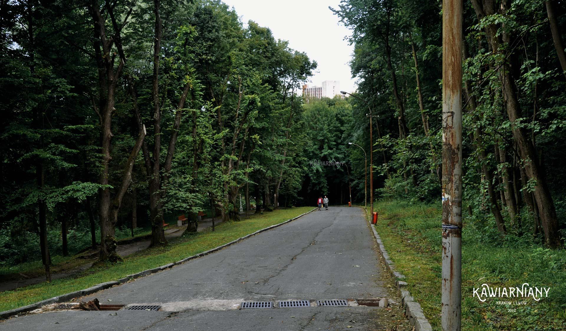 Park w Truskawcu