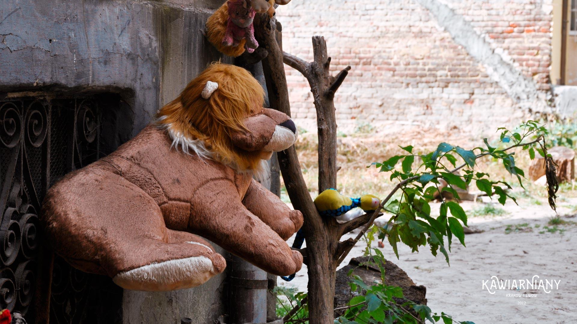 Podwórko Zaginionych Zabawek Lwów