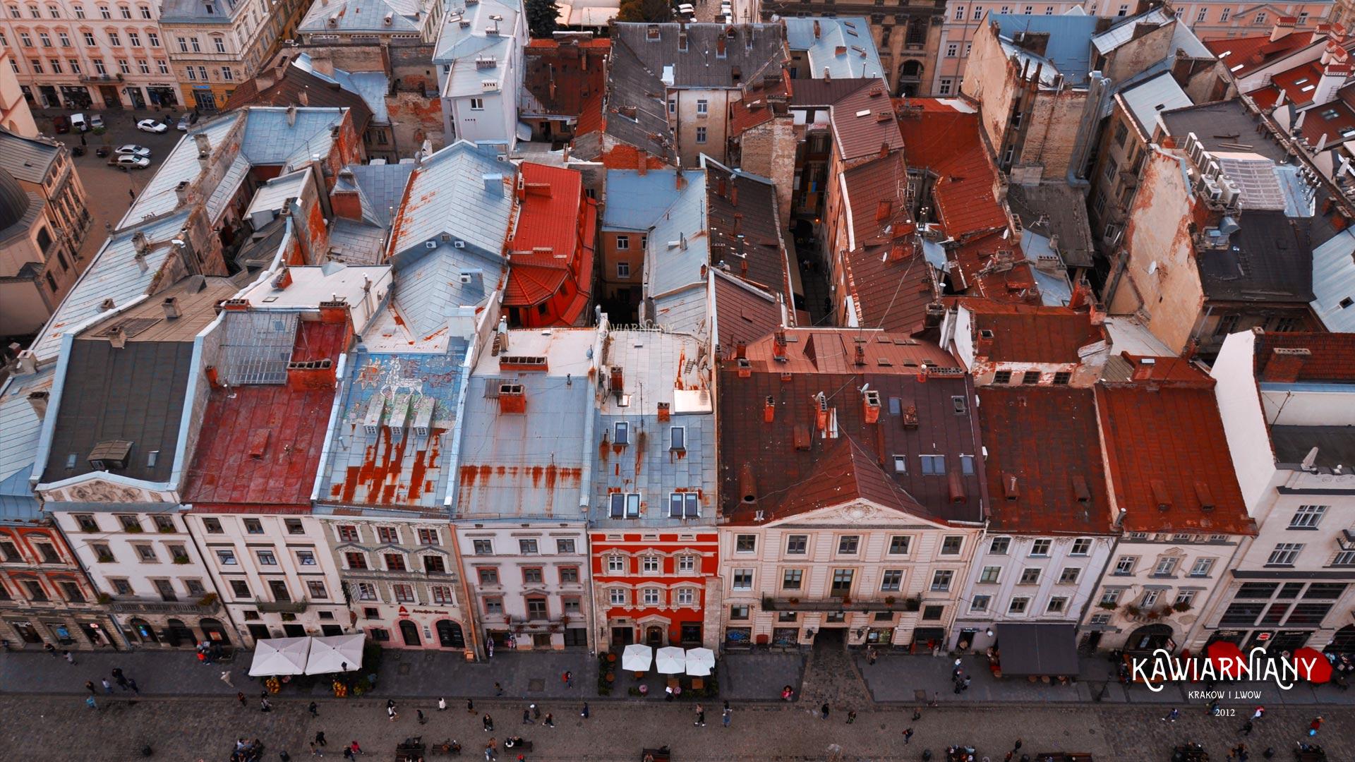 Jak poruszać się po Lwowie? Komunikacja, Uber, Bolt…