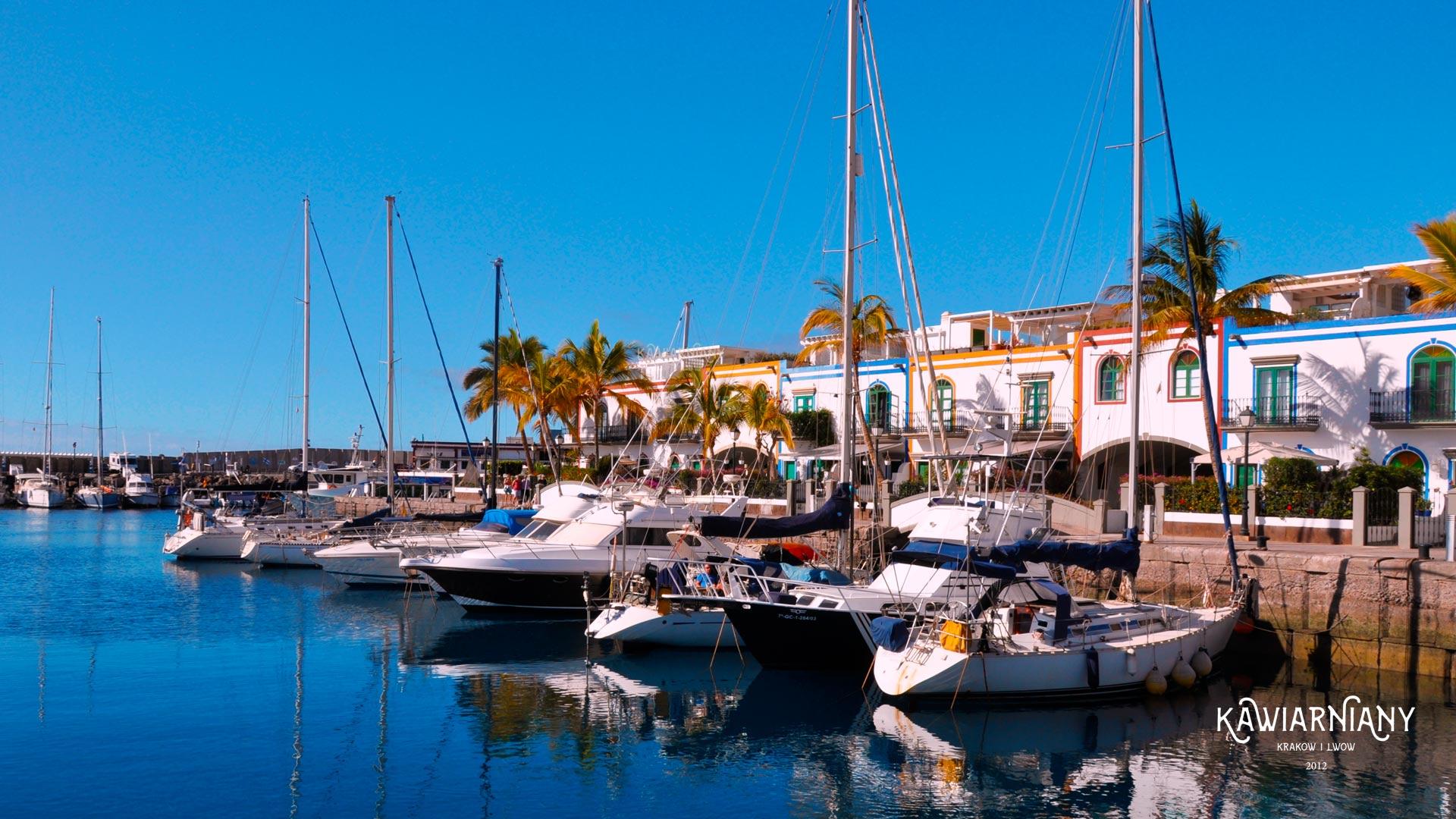 13 rzeczy, które warto kupić na Wyspach Kanaryjskich w Hiszpanii. Co przywieźć?