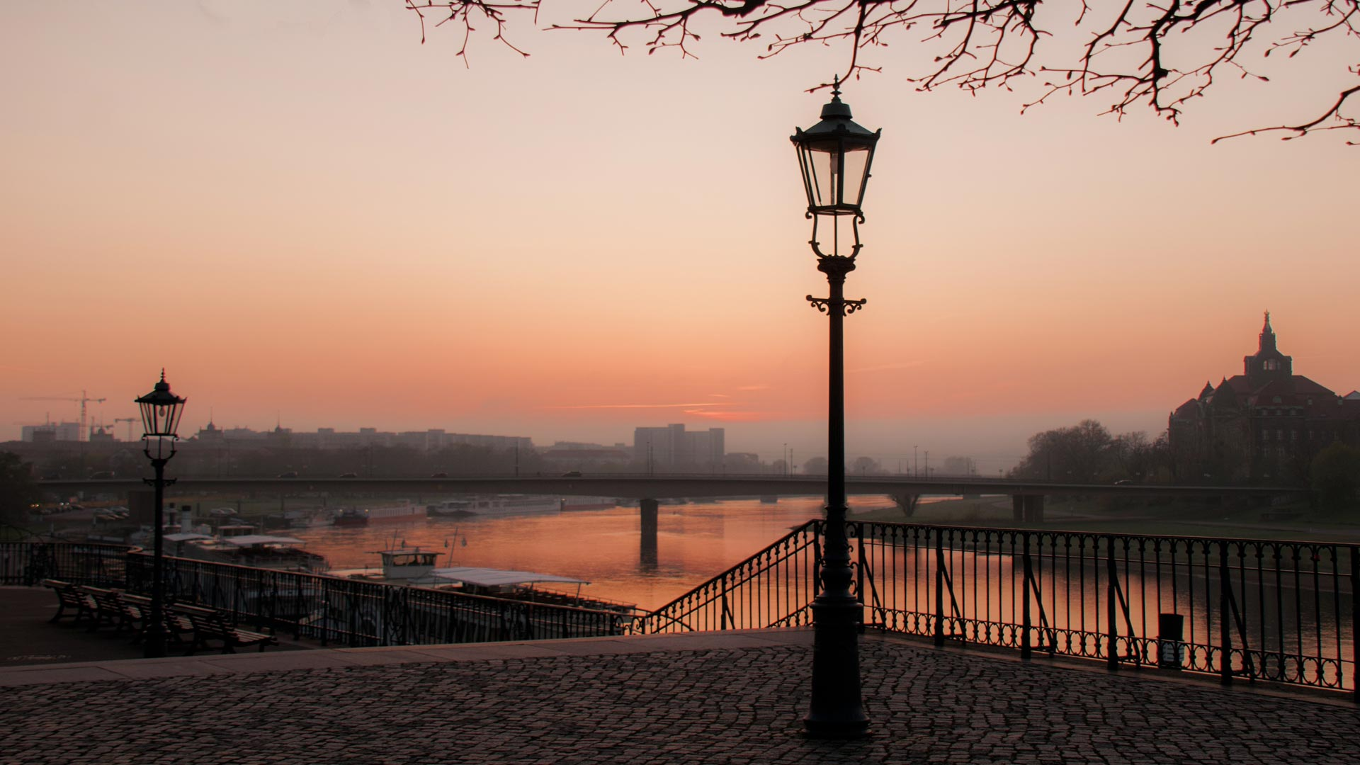 33 ciekawostki o Dreźnie – fakty, informacje, zwiedzanie
