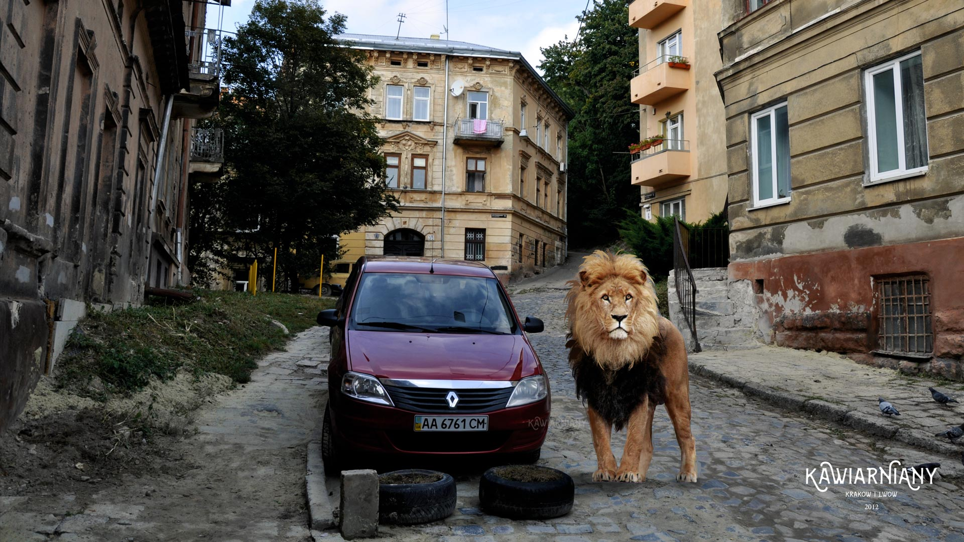 lwy we lwowie