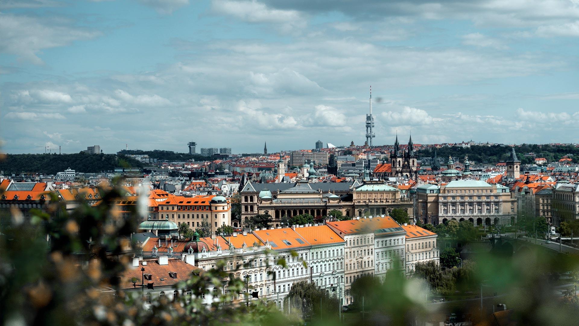 Ile alkoholu można przywieźć z Czech do Polski? Limity celne