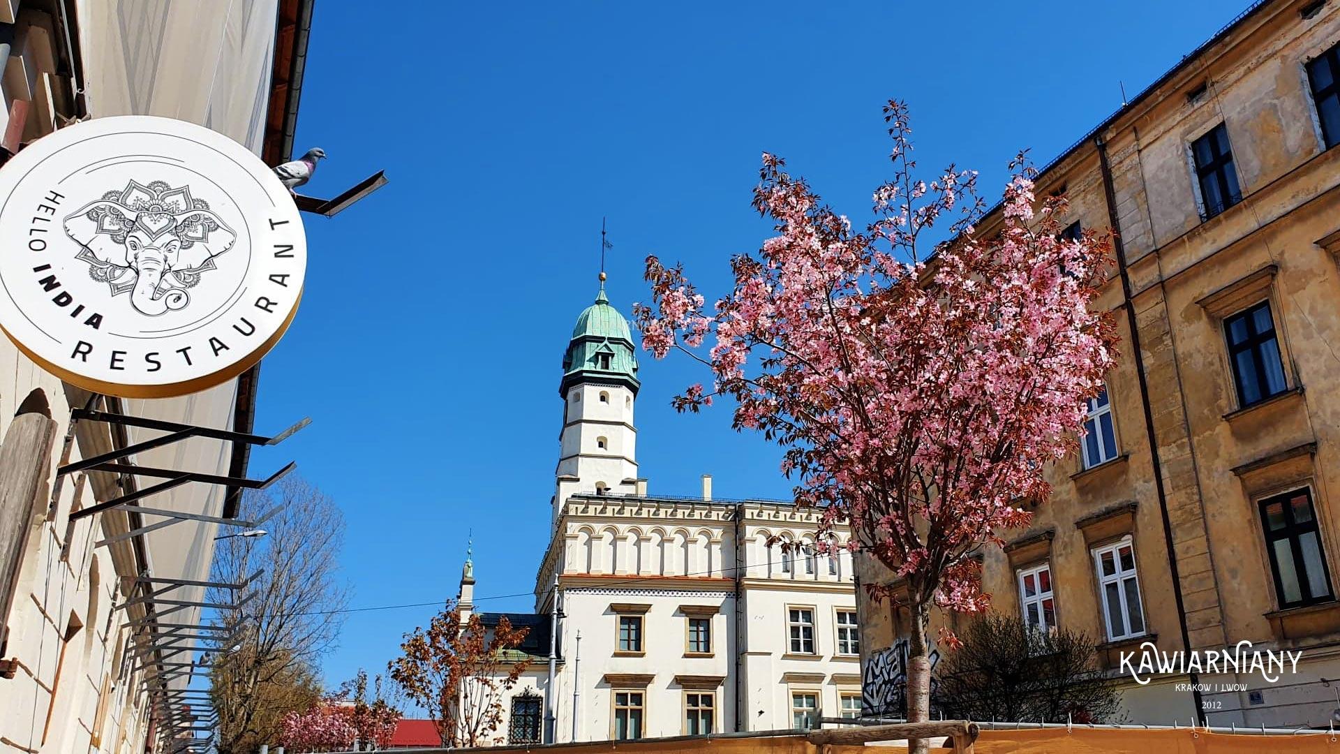 Kazimierz w Krakowie – ciekawostki, zwiedzanie, informacje