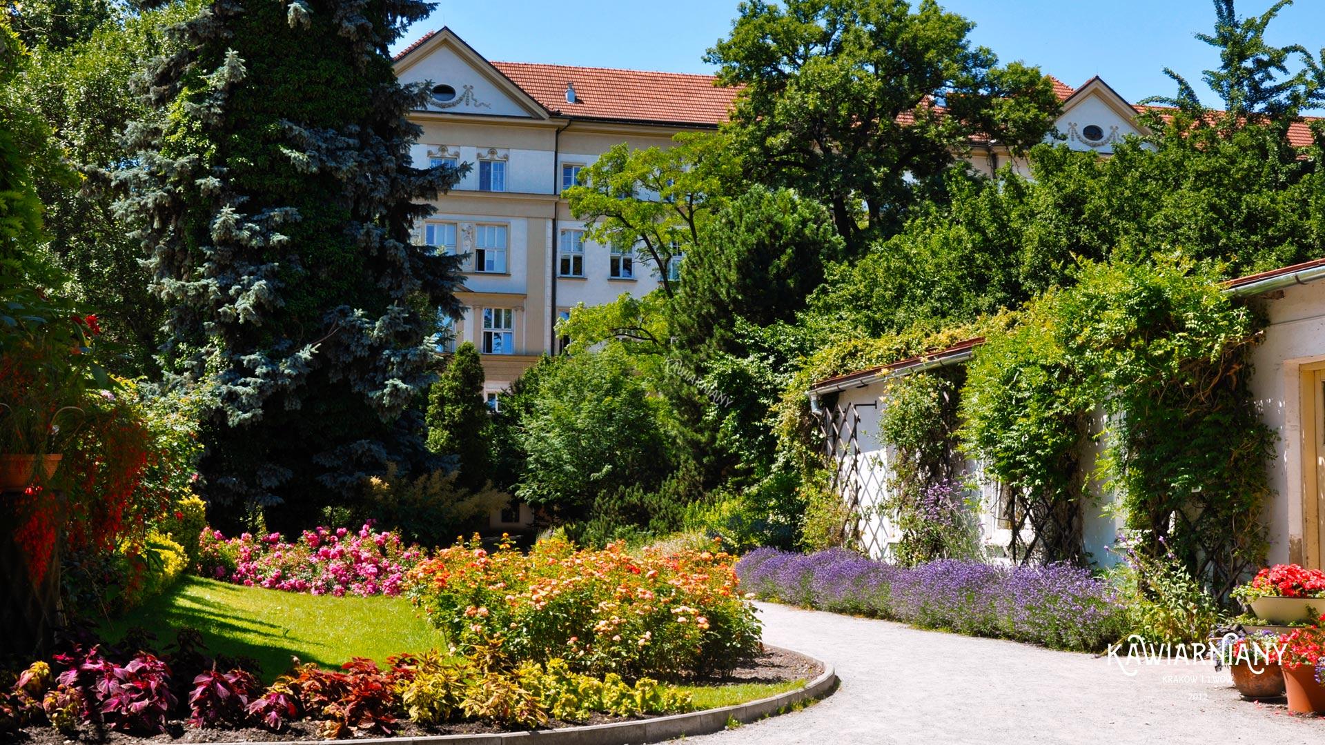 Ogród Botaniczny w Krakowie – cennik, bilety, zwiedzanie, parking