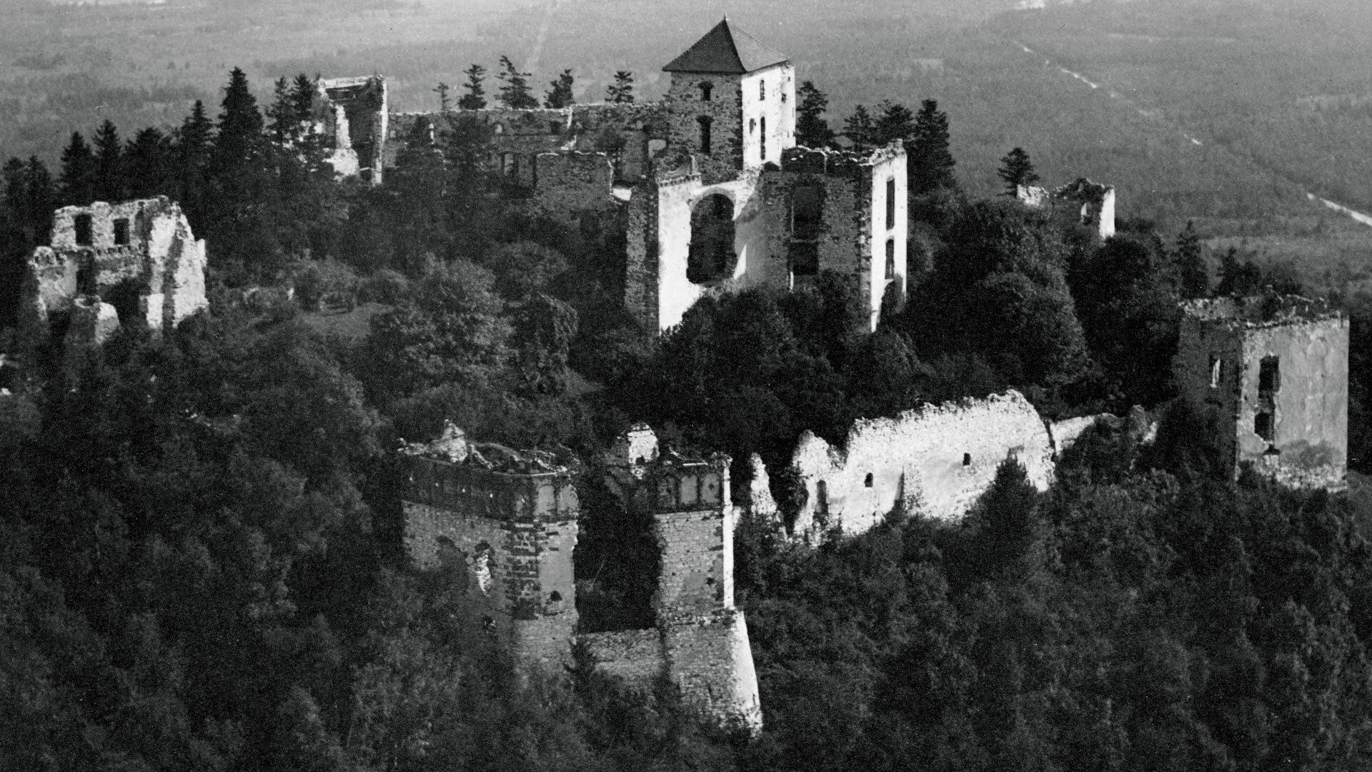 Tak wyglądał Zamek Tenczyn w Rudnie. Stare zdjęcia i pocztówki