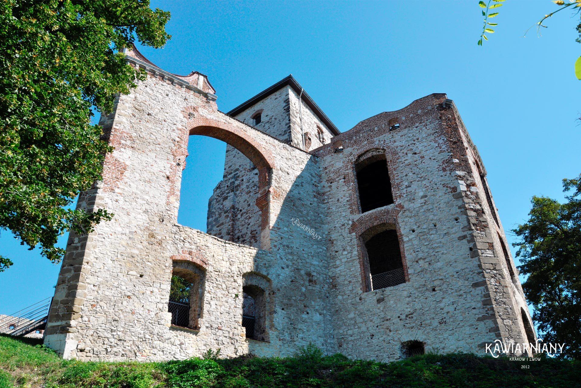 zwiedzanie zamku tenczyn w rudnie