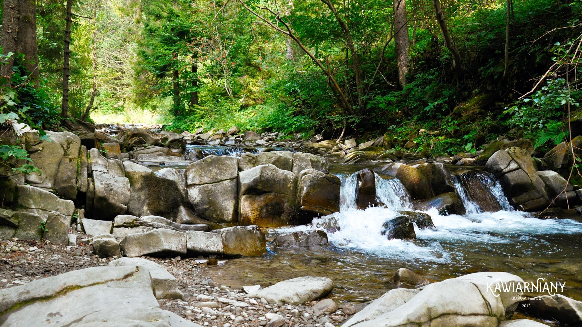 Jaka rzeka płynie przez Szczawnicę? Rzeka w Szczawnicy