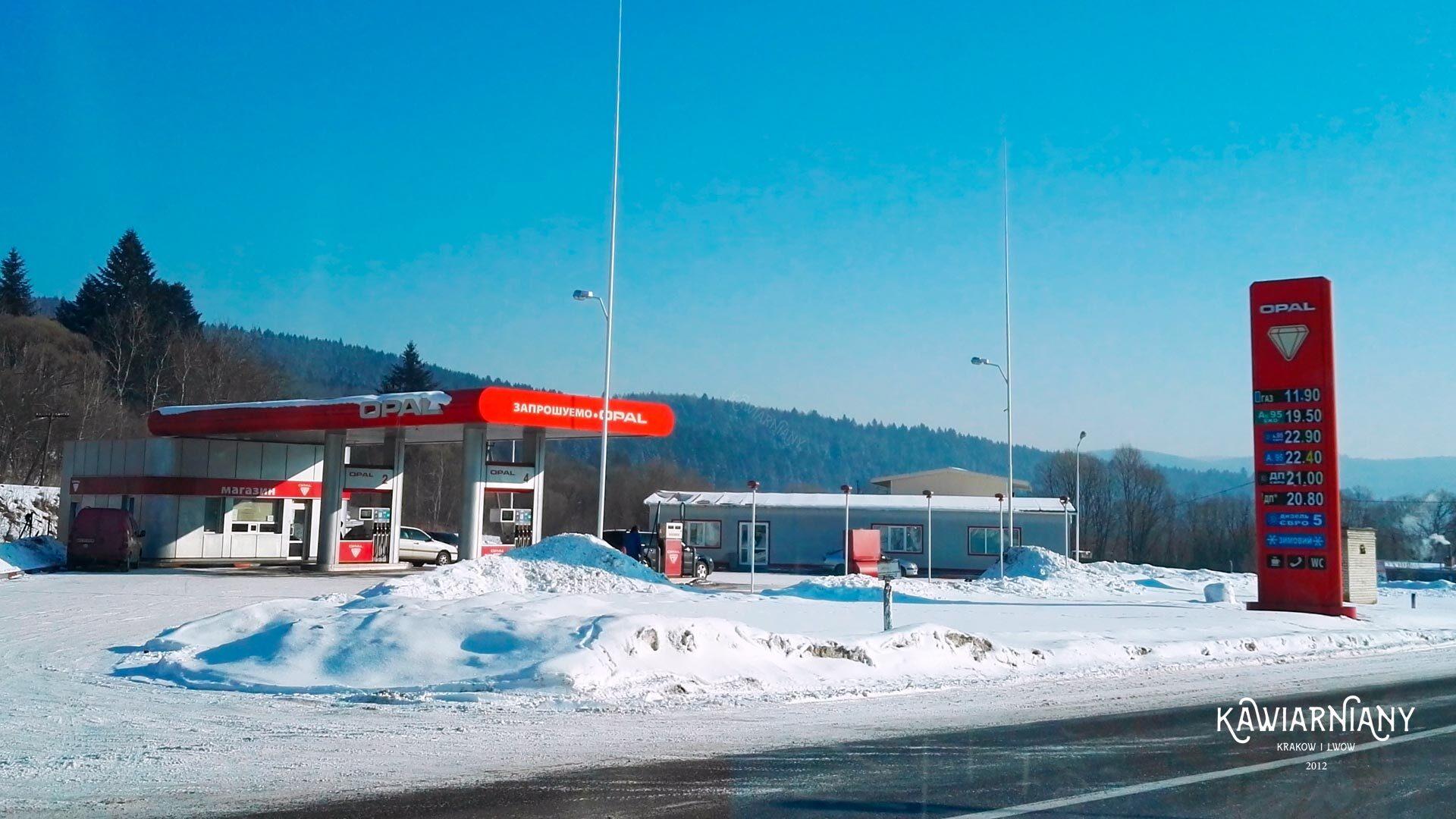 Ile kosztuje paliwo na Ukrainie? Aktualne ceny benzyny