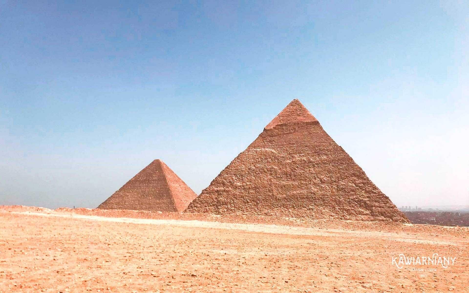 Jaki jest język w Egipcie? Czy język egipski czy arabski?